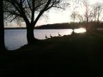 Lake Wingra in the Fall